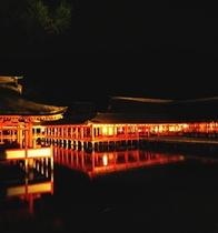 ■厳島神社ライトアップ