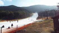 *ゲレンデの風景/スキーもスノーボードも思いっきり楽しもう!