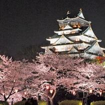 大阪城 夜景
