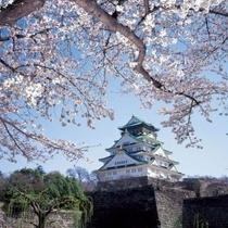 別称は錦城(金城とも表記)「大坂城跡」として国の特別史跡に指定されている。