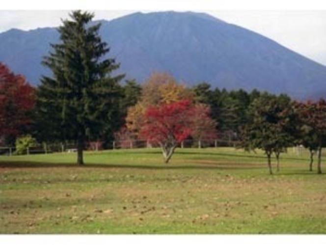 小岩井農場の秋