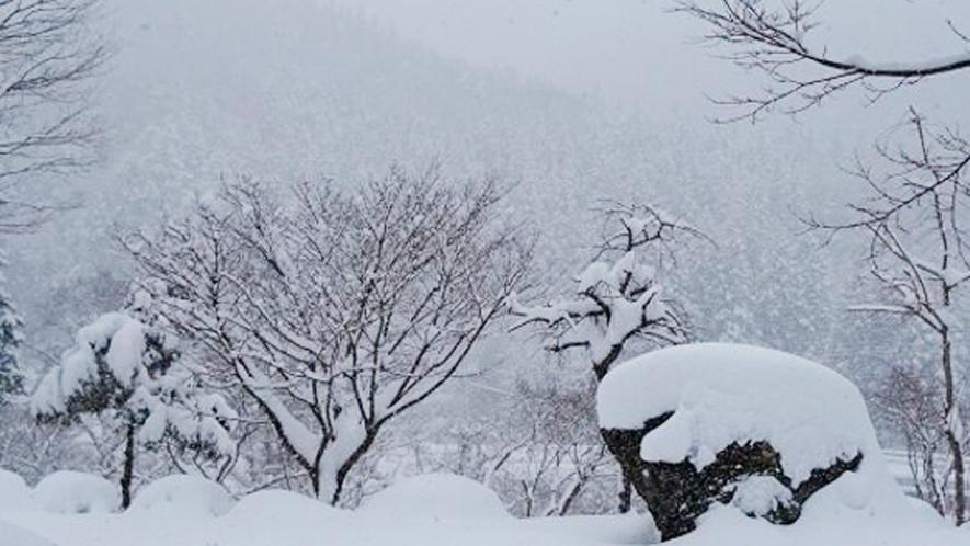 *周辺/真っ白な雪景色に包まれる周辺の風景