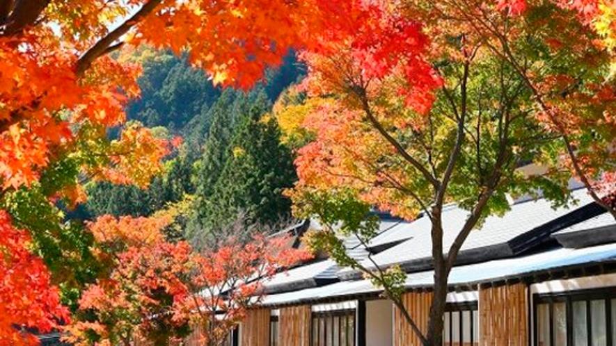 *外観[秋]/山間の美しい紅葉に包まれる秋