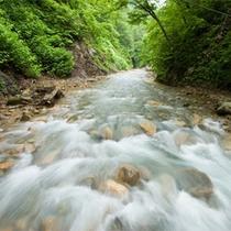 *周辺散策/川沿いの景観を楽しみながら自然の中の散策をお楽しみ下さい。