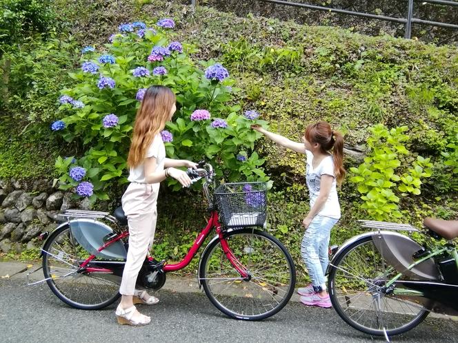 電動自転車 2