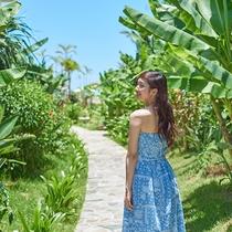 *亜熱帯の雰囲気漂うお庭をお散歩