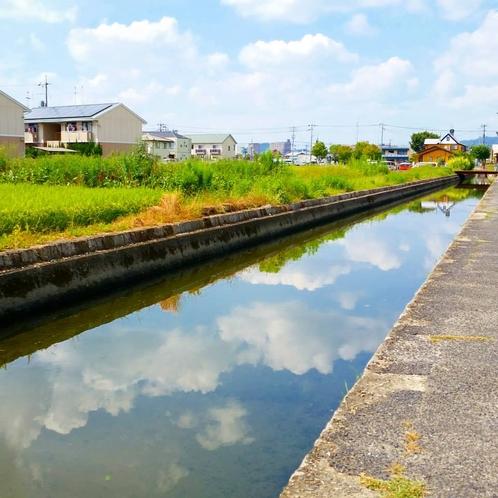 早島は水路がたくさん。亀も住んでるよ!歩くのが楽しくなります。