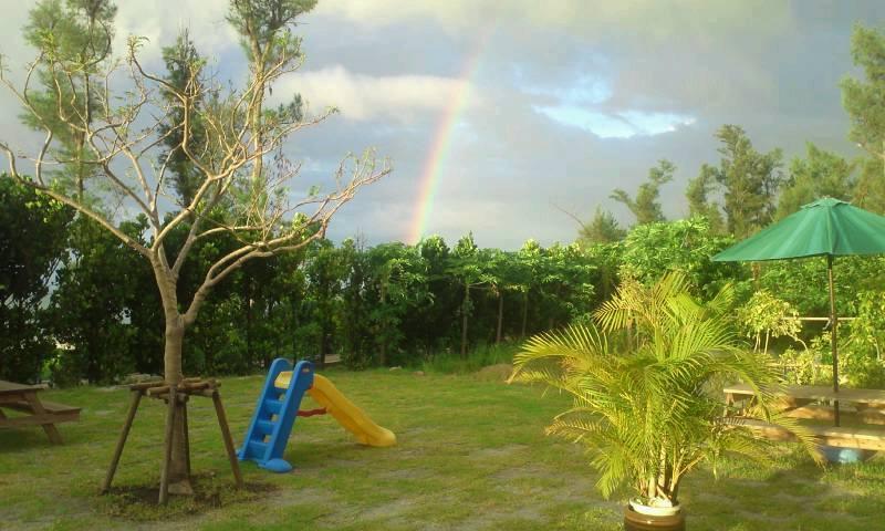 お庭からの虹