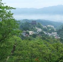 吉野山・新緑