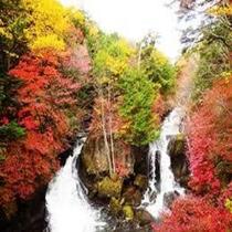 栃木県日光竜頭の滝