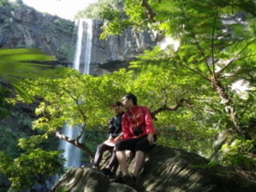 超お得!!亜熱帯ジャングルでマングローブカヌーとトレッキング1日ツアーセットプラン☆2泊限定