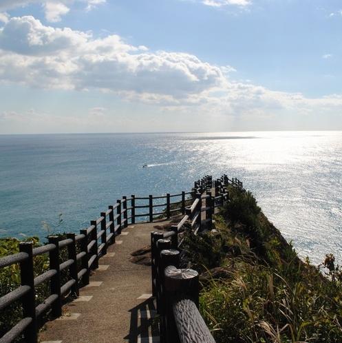【日向岬】一面大海原の絶景です!