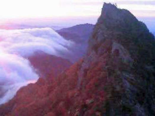 【自然体験】西日本最高峰石鎚登山ロープウェイで一気に標高1300mへ★二食付き★2大特典付き