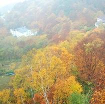 志賀高原、発哺温泉の紅葉