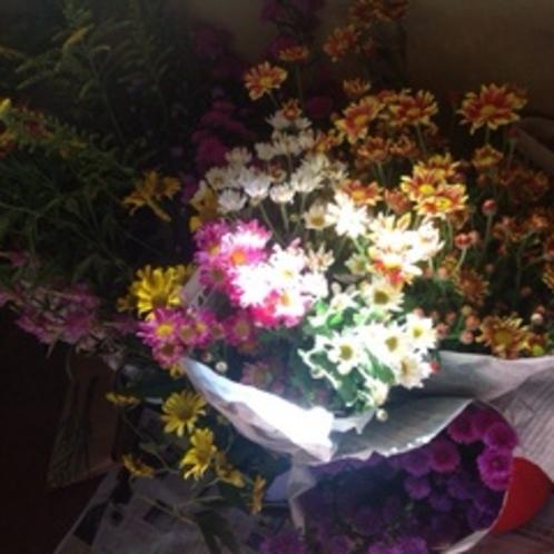 じつはこの花たちは、、