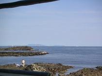 恵比須島1