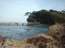 恵比須島2