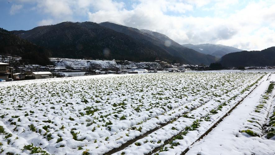 *【大原の雪景色】日本昔話に出てきそうな冬の景色です。