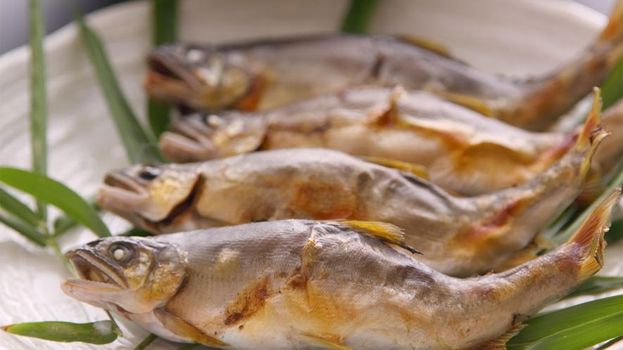 *【焼き鮎鍋】この鮎がお鍋に丸ごと入ります!塩焼きとまた違った味わいです♪