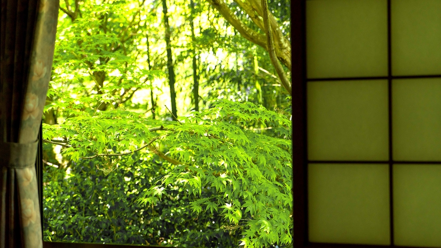 *【お部屋】お部屋から新緑がご覧いただけるお部屋も。