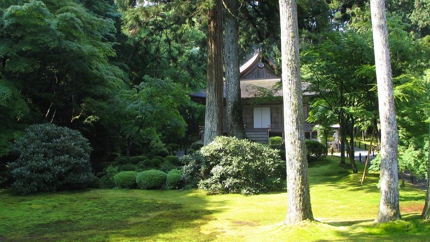 *【夏の大原三千院】青々とした木々、柔らかそうな苔が美しい夏の三千院。暑い夏でもここだけは涼しげ。
