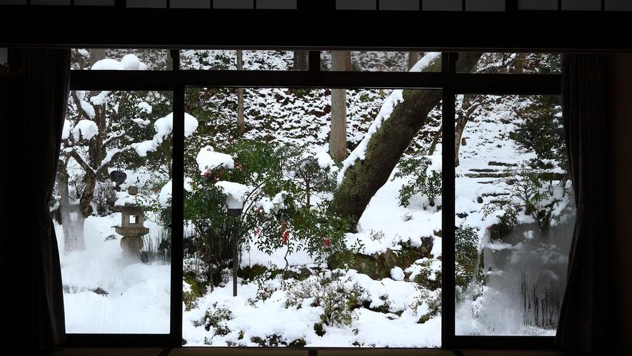 *【冬の中庭】この時期だけしか見られない冬の中庭。