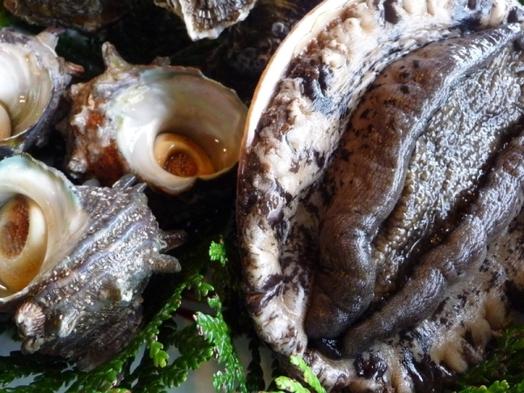 今が一番!絶品海の幸をWで味わう☆旬の海女獲りあわびとサザエの名コンビ♪