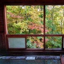 【やすらぎの湯】窓から紅葉を眺める