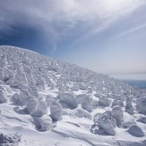 世界的に知られる自然の芸術「樹氷」は12月下旬~3月上旬の間、お楽しみ頂けます♪