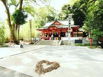 【通年】来宮神社