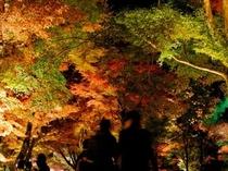 嵐山 宝厳院 紅葉
