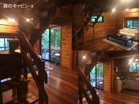 森のキャビン-X    G-style camp