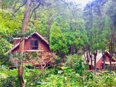 森のプライベートガーデン グランピングロッジB
