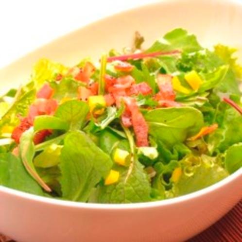 【夕食】季節を彩るサラダ