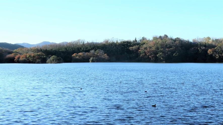 伊豆の瞳と称される一碧湖(車で約7分)