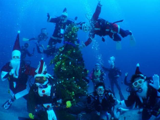 海のクリスマスツリー