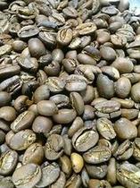 コーヒー焼き立て(縦)