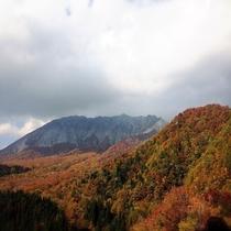大山・蒜山パークウェイの紅葉