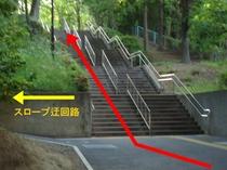 ④ 階段を登ります。左手にスロープの迂回路がありますので、キャリーをお持ちの方はご利用ください