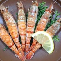 【焼海老】シンプルな調理で素材の持ち味を活かしております