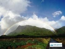 近くの散歩道を歩いていたら綺麗な二重の虹が見えました。 屋久島は虹の島とも言われています。