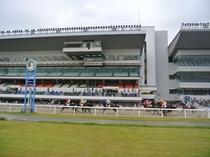 【川崎競馬場】周辺にはショッピングビルもあり、観光スポットとして注目です。