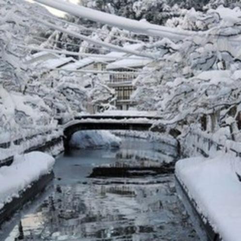 【城崎温泉】綺麗な雪景色の中で冷えた体は、温泉であたためましょう