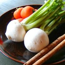 綾の豊かな自然に育てられた有機栽培の野菜達