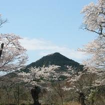 *周辺景色/「芳賀富士」のどかな里山ならではの、のんびりとした風景がお待ちしております!