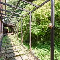 *敷地は広く、緑に囲まれております。探検や鬼ごっこを行うお客様も多くいらっしゃいます