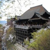■清水寺■