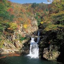 【宿周辺の風景】渓谷と紅葉が織り成す自然美