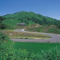 【宿周辺の風景】夏には濃い緑に包まれます