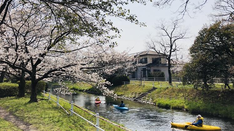*【周辺観光】カヤック・和舟体験